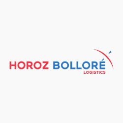 Logo-250x250-Horoz-Bollore